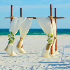 The Island Romance