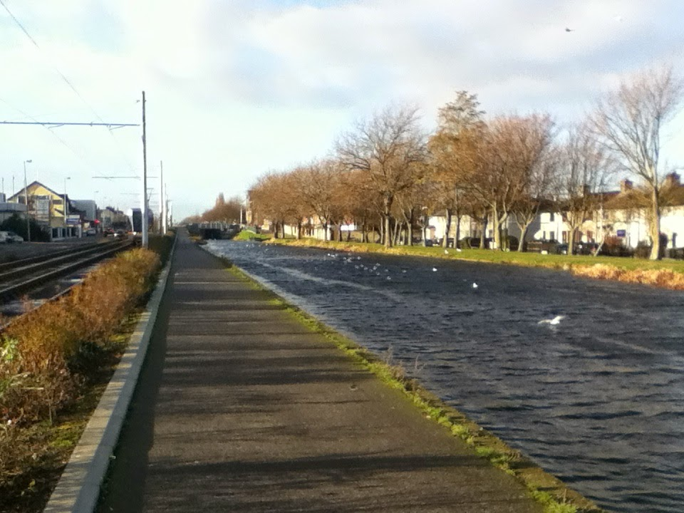 Grand Canal from Suir Luas Stop