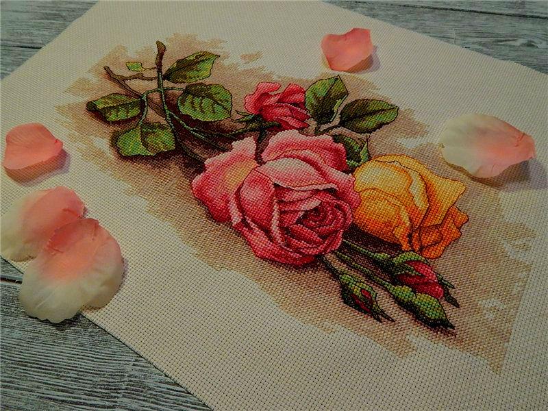 Вышивка срезанные розы дименшенс 59