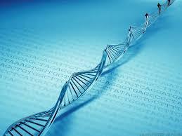Pengertian Algoritma Genetika