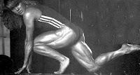 Wendy Jeal legs