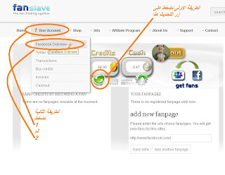اربح بورو المواقع الاجتماعية fanslave 11.jpg
