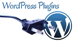 Popular WordPress Plugins for eCommerce