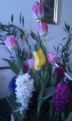 Nowruz flowers at home