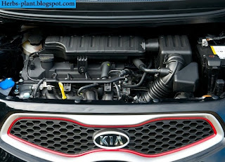Kia picanto car 2013 engine - صور محرك سيارة كيا بيكانتو 2013