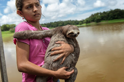 Man, Girl, Snake, Boa, Floating house, Solimoes, River, Manaus, Amazonas, Brazil, FIFA World Cup, Animal, Sports, Tourism, Tourist, Sloth, Three Toed