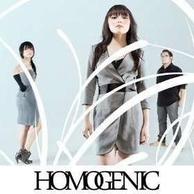 homogenic Musisi dan Band Indonesia yang Diakui di Luar Negeri