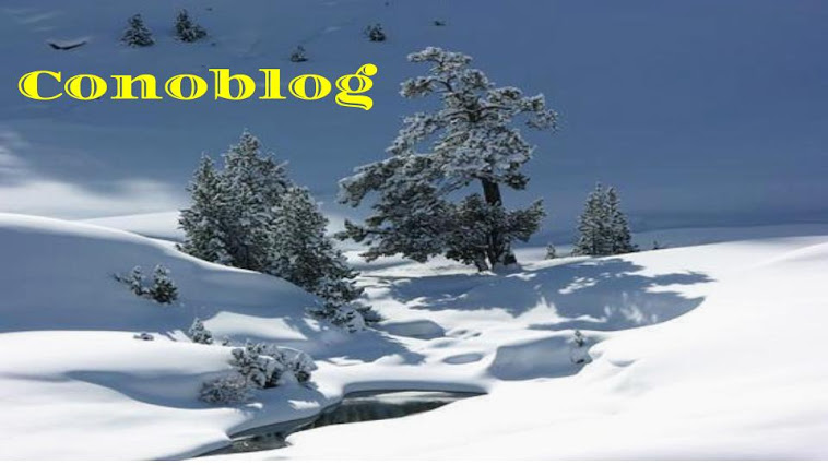 Conoblog