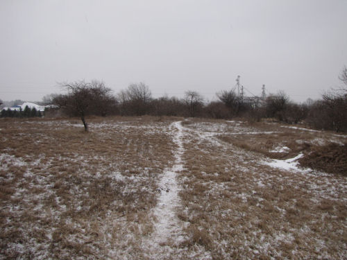 bare ground with a little snow