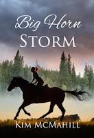 Big Horn Storm