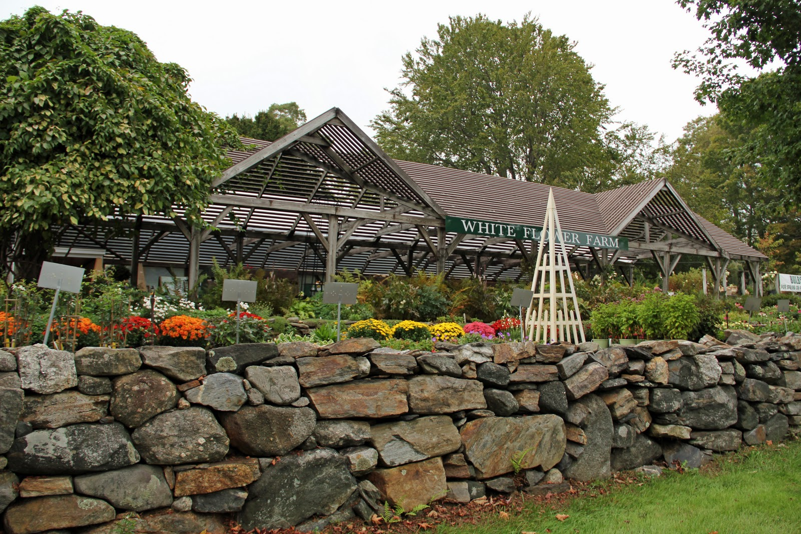 Naples And Hartford In Season White Flower Farm