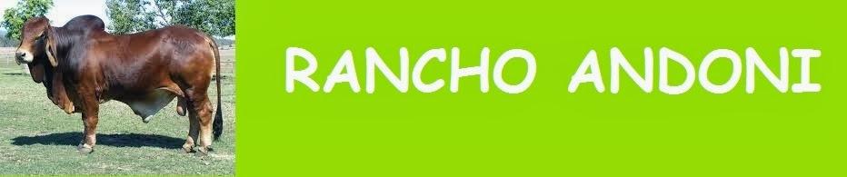 Rancho Andoni