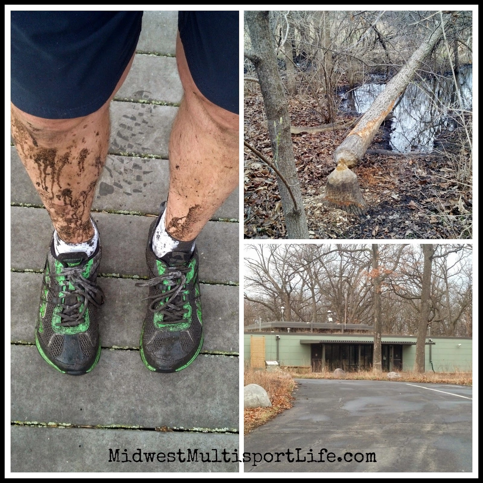 Trail Running Lyman Woods