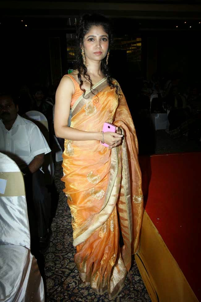 Ratan Rajput In Saree