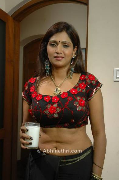 Navels Cleavages Feedjit Live Blog  Cleavage Mallu Hot Navel