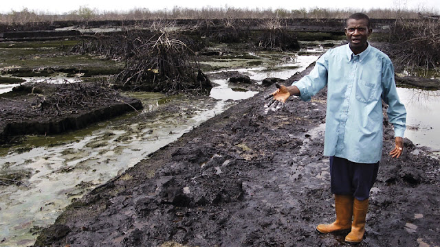 Shell, Delta del Níger,