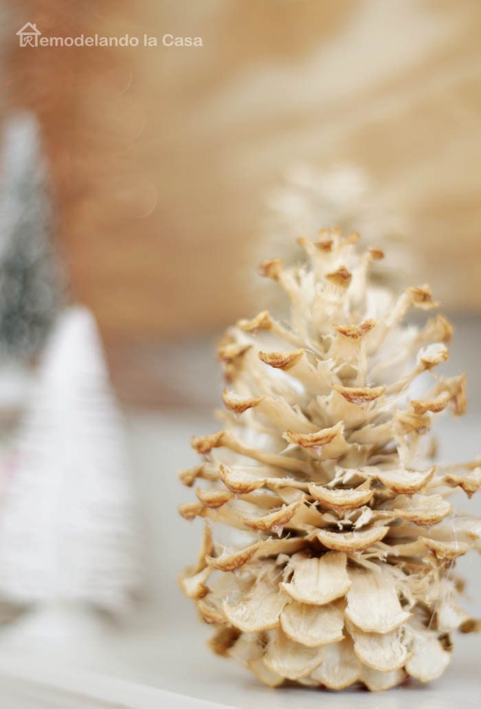 How to bleach pine cones