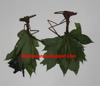 langkah-langkah cara membuat mainan tradisional anak berupa wayang dari daun singkong 1