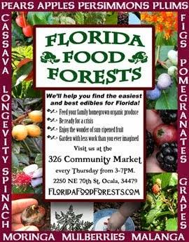 Florida Food Forests Nursery