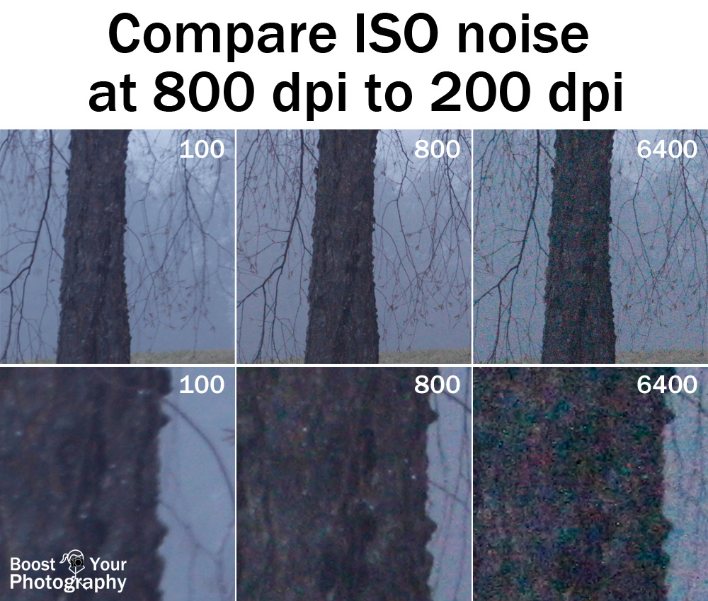 Compare ISO noise at 800 and 200 dpi | Boost Your Photography