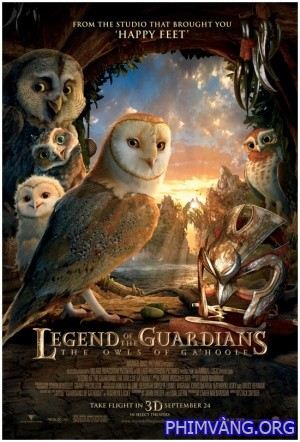 Hộ Vệ Xứ Ga'hoole - Legend Of The Guardians: The Owls Of Ga Hoole (2010)