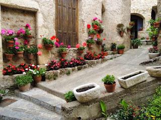 flowers, village, France