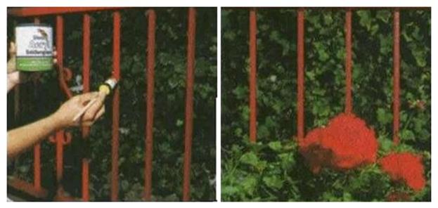 Покраска металлических решеток балкона
