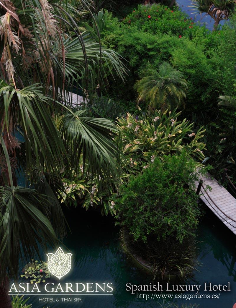 Hotel de lujo asia gardens los exuberantes jardines de un for Jardines de lujo