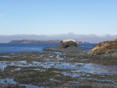 Fog Bank, Cape Onion, NL