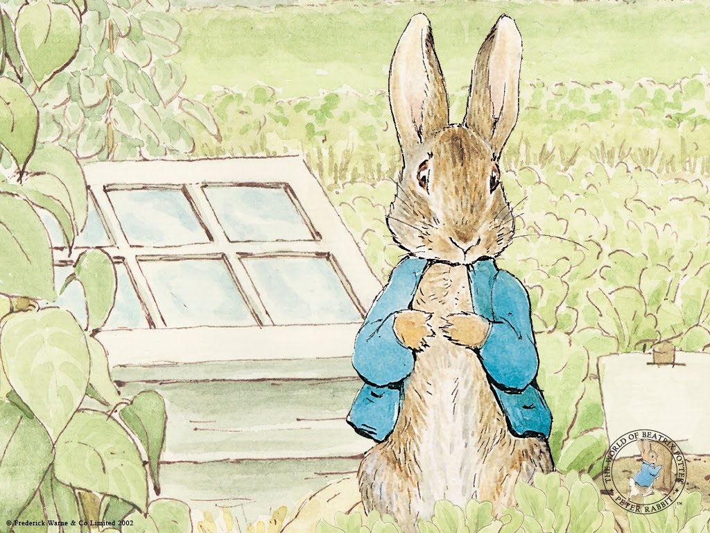 On this day in history - Page 10 Peter_rabbit_peter_1024