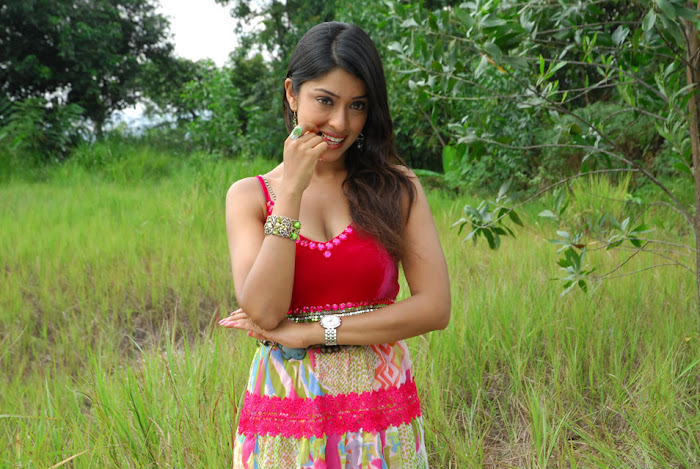 payal gosh , payal gosh new spicy unseen pics