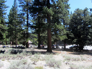 View south on Windy Gap Trail arriving at the trailhead in Crystal Lake Campground, Angeles National Forest