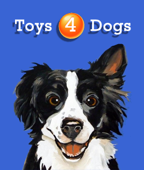 http://toys4dogs.pl/