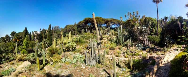 Jard n bot nico mediterr neo dosmaletas for Precio de entrada al jardin botanico