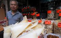Sopa de barbatana de tubarão: iguaria chinesa causa indignação entre os ecologistas