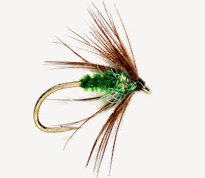 Fly of the Month