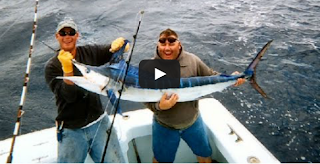 Casting Marlin