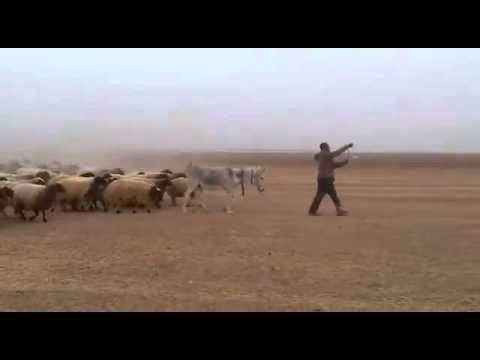 الجيش الدي لايقهر هههههه