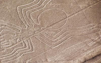 Nazca lines - A spider