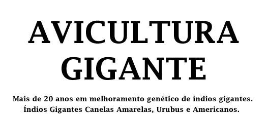 Índios Gigantes - Avicultura Gigante