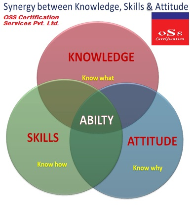 professional knowledge and abilities essay