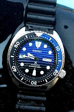 SEIKO DIVER AUTOMATIC SAVE THE OCEAN JDM