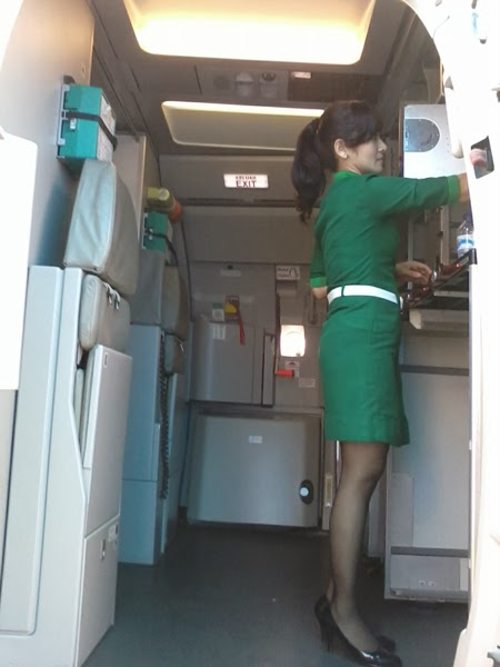 Pintu Masuk ke Pesawat