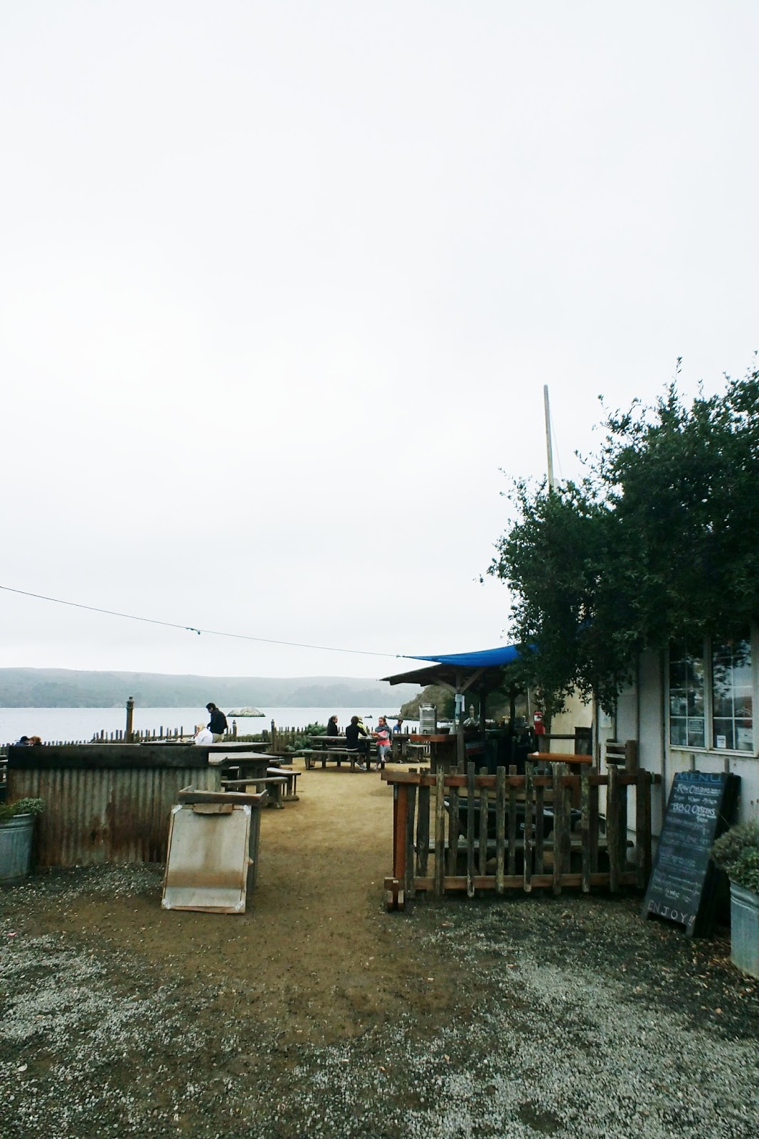 travel with the tasteful me Hog sland Oyster Co, California
