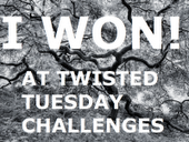 I Won At Twisted Tuesday's Challenge