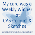 Top-5 CAS Colours & Sketches