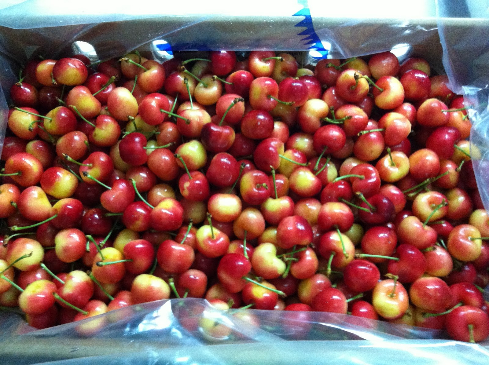 produce clerk the produce clerks handbook by rick chong fresh packed rainier cherries destined for