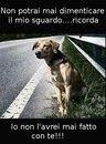 Gli animali non si abbandonano