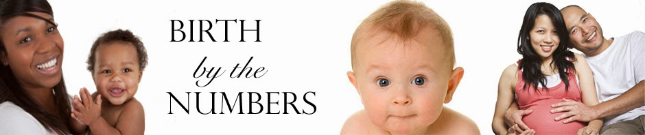 Visit Birth By The Numbers