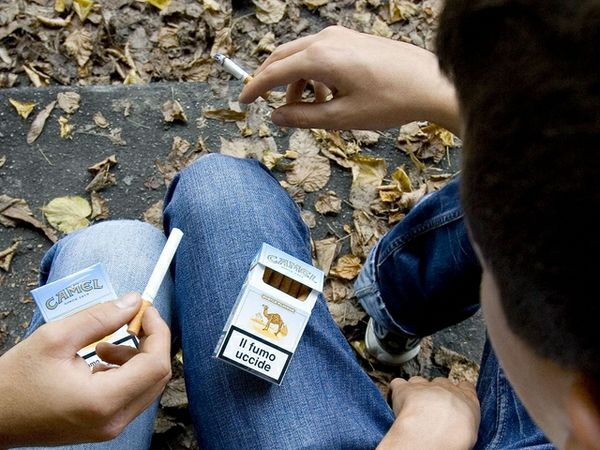 Scuola in forma fumo alcol e droghe - Sesso bagno scuola ...
